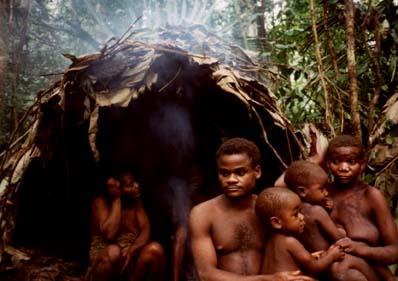 pygmees3.jpg