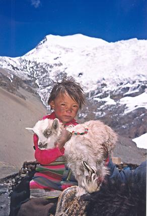 tibetenfant1.jpg