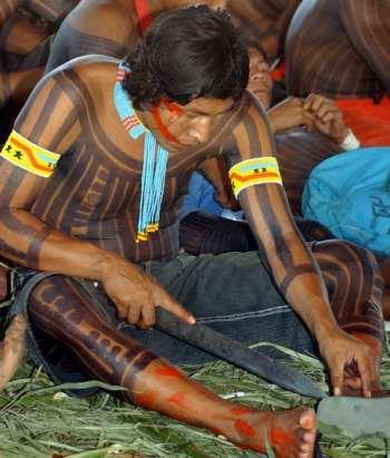 indienkayapo2006agbrpt.jpg