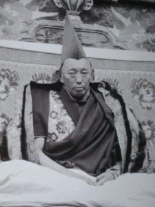 REGARD sur les TIBETAINS dans TIBET 13%C3%A8me-dalai-lama-225x300